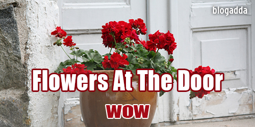 flowers-at-my-door-4