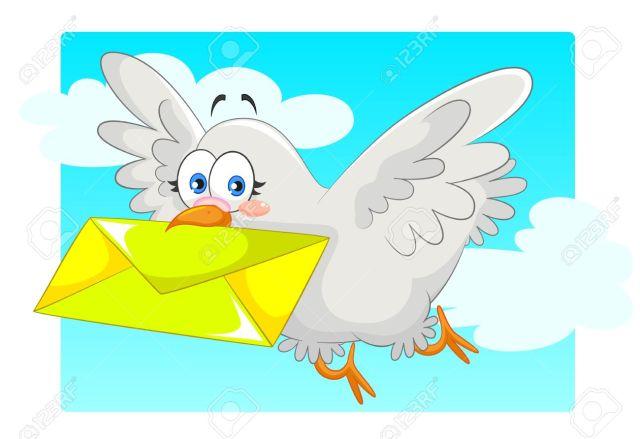 pigeon kabootar